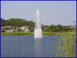 Pond and Lakewater Features